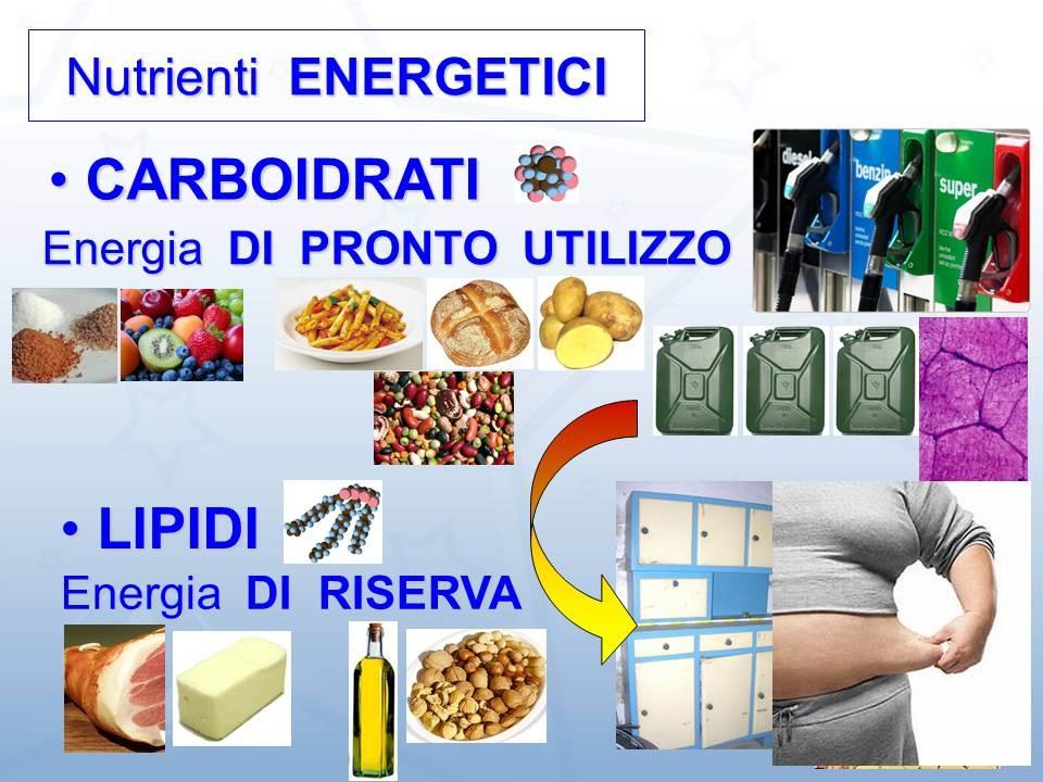 nutrienti energetici