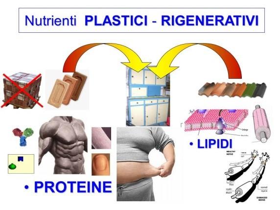 plastici rigenerativi